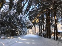 軽井沢 雪景色